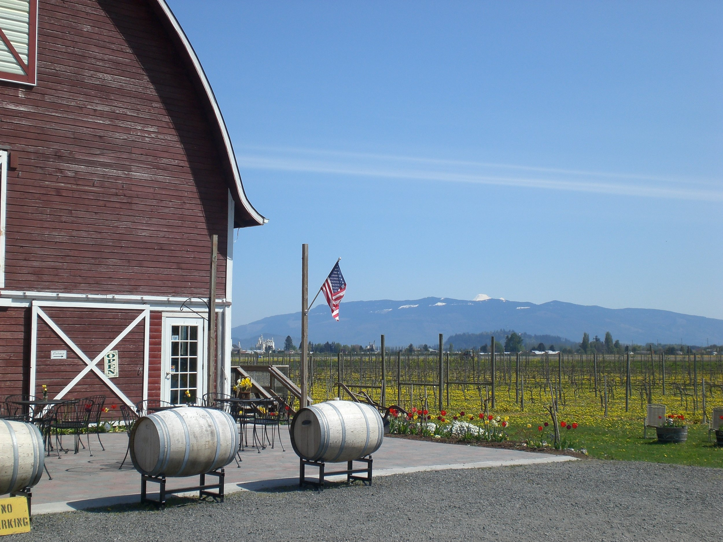 Tulip Valley Grounds, Vineyard, and Mt. Baker