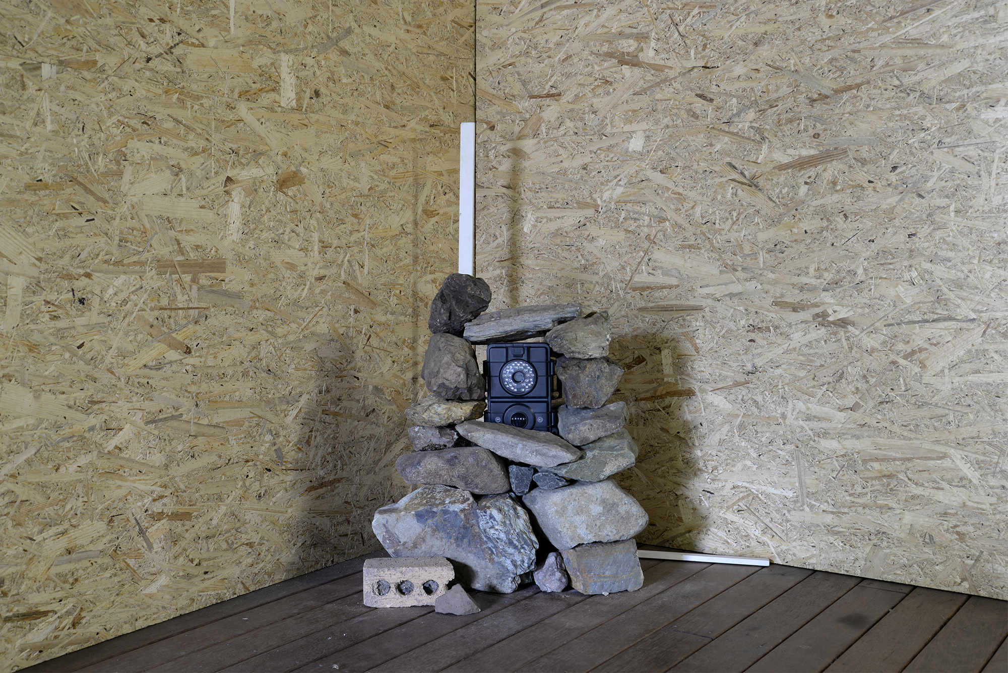 Assemblage of stones, trail camera and primed pine.