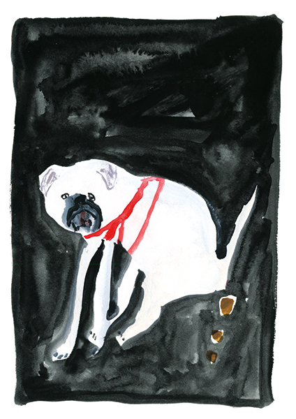 a-page-from-the-zine-'Pooing-Dogs'-_FayeMoorhouse.jpg