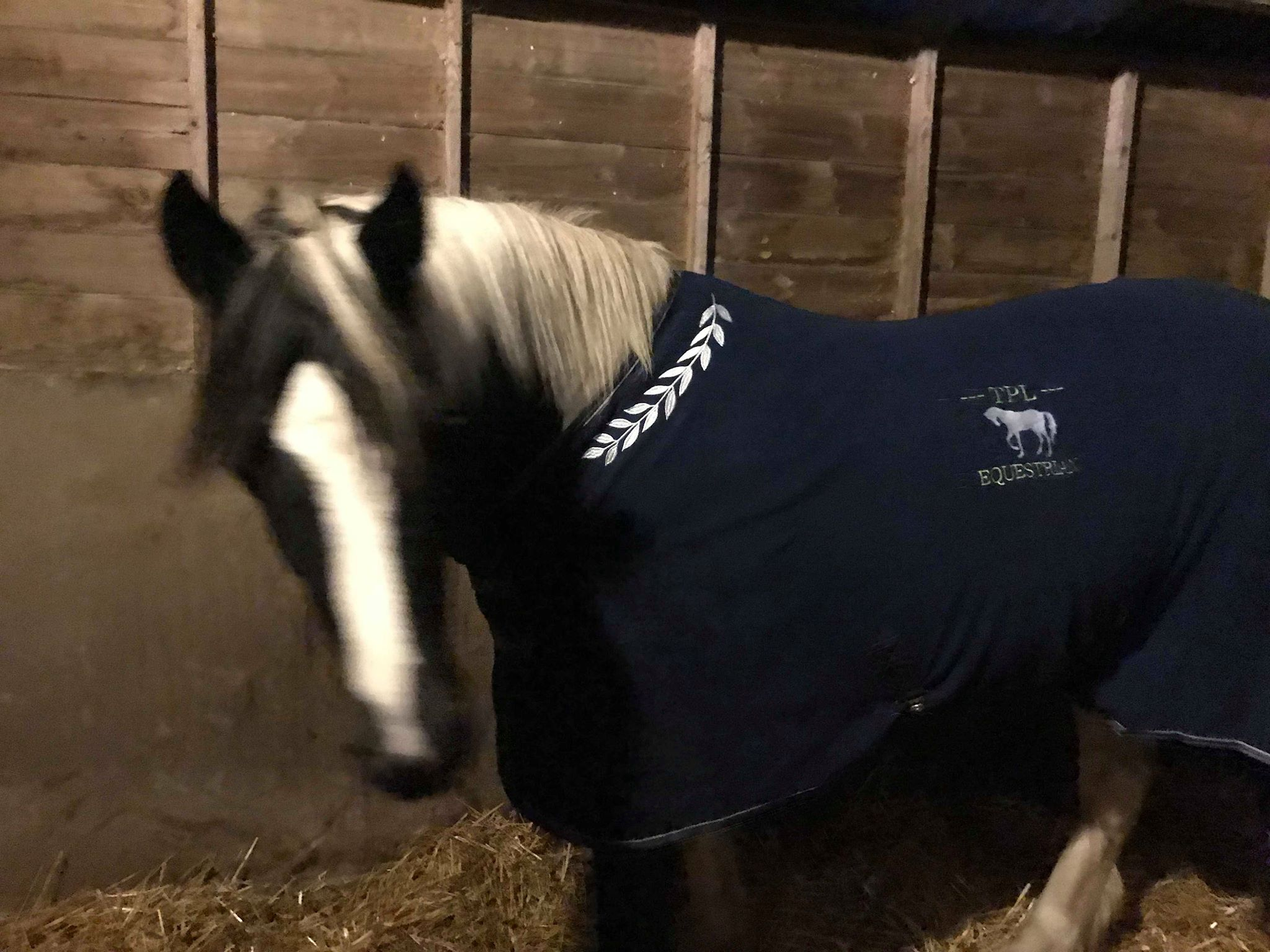 Product Review Shires Tempest Fleece