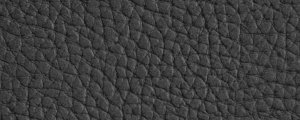 Vegan Leather -