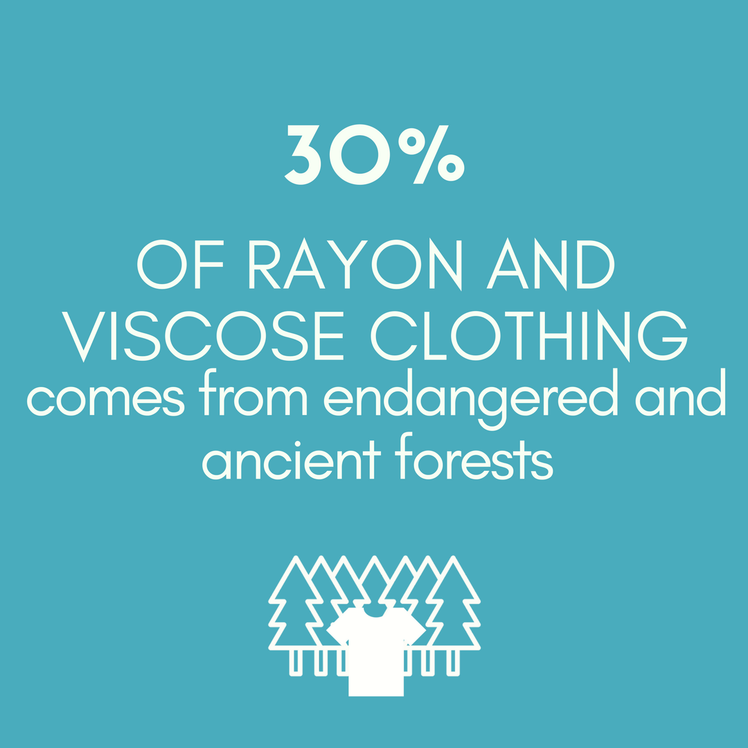 30% OF RAYON AND VISCOSE CLOTHING comes from endangered and ancient forests
