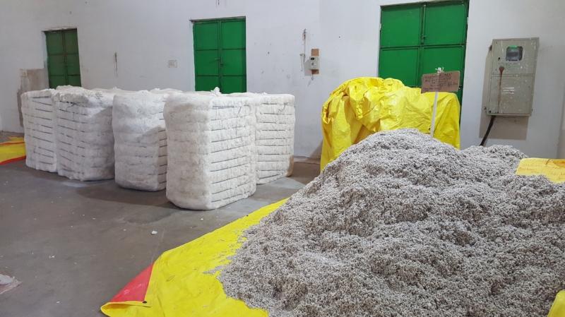 Planta desmotadora de algodón