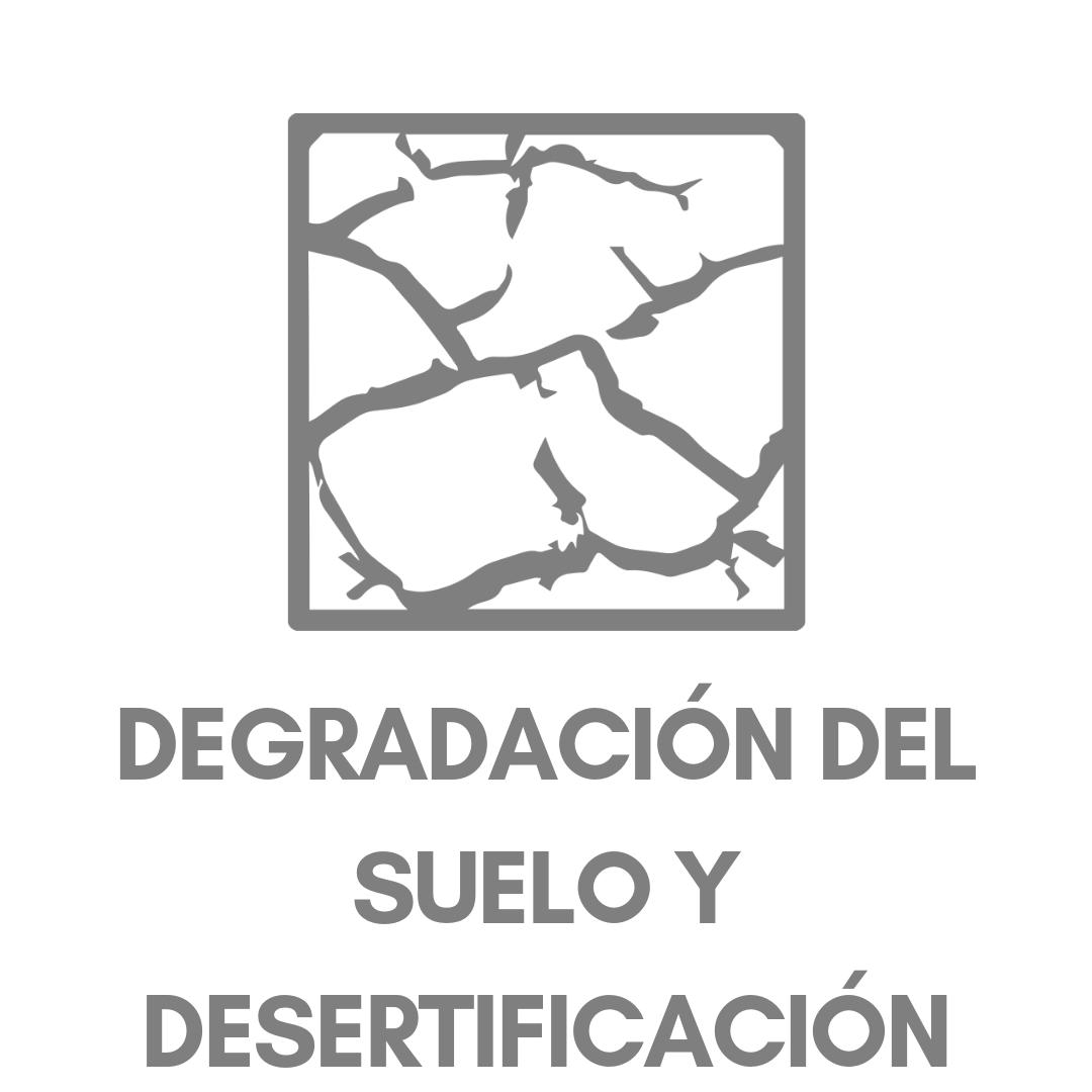 DEGRADACIÓN DEL SUELO Y DESERTIFICACIÓN.png