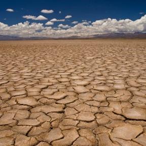 degradaci%C3%B3n+del+suelo+y+desertificaci%C3%B3n