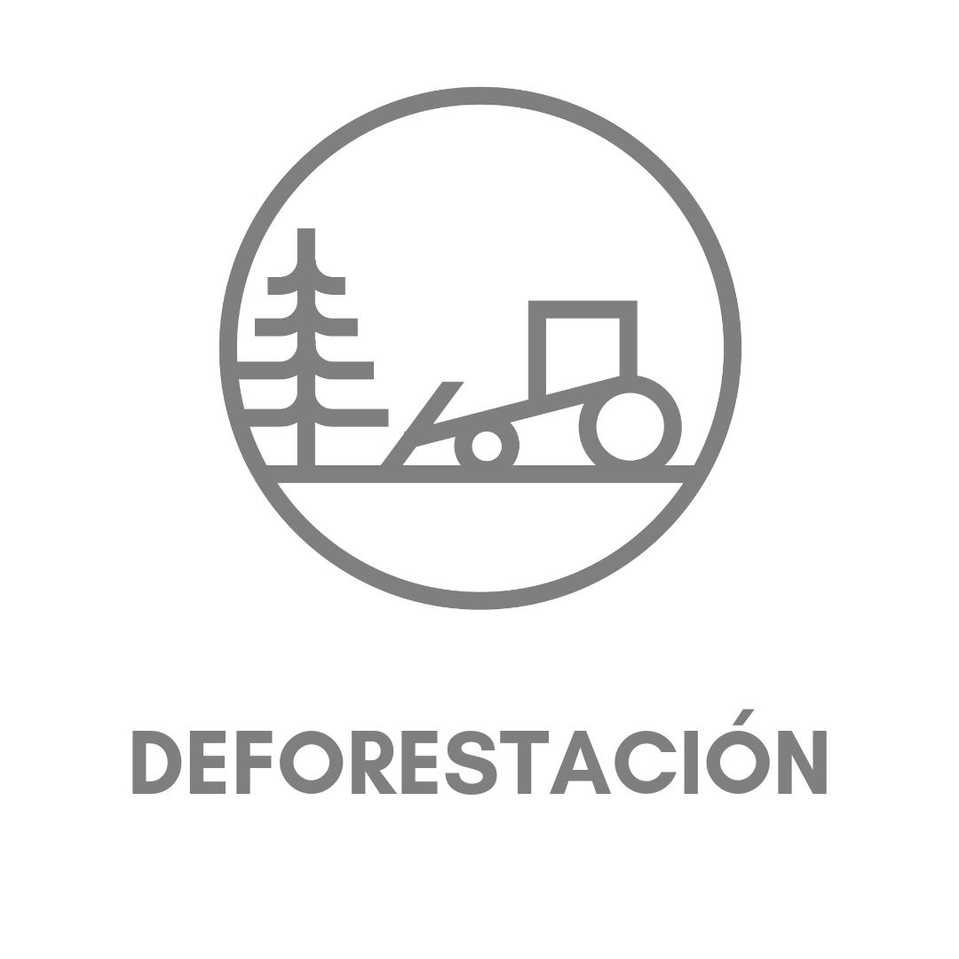 Deforestación.png