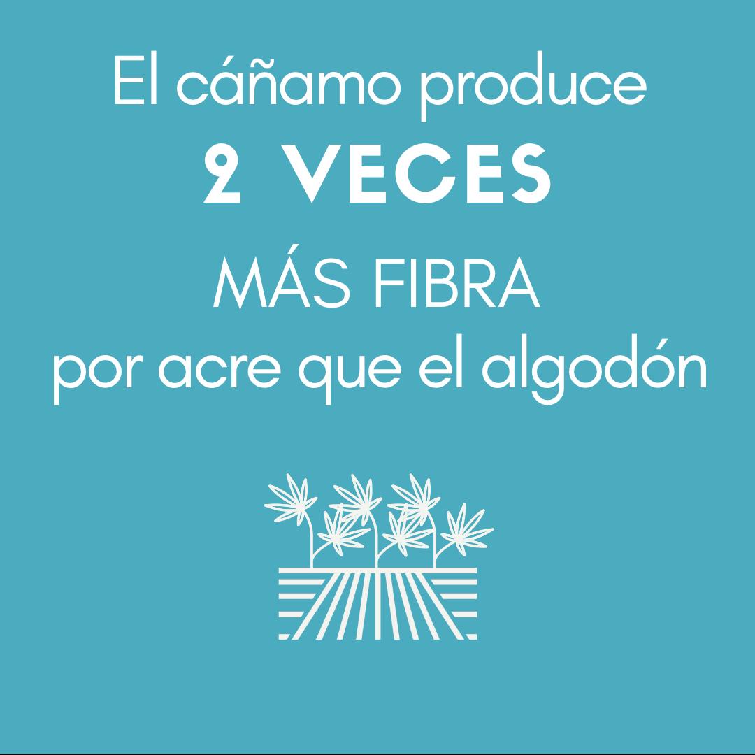 >El cáñamo produce 2 VECES MÁS FIBRA por acre que el algodón.