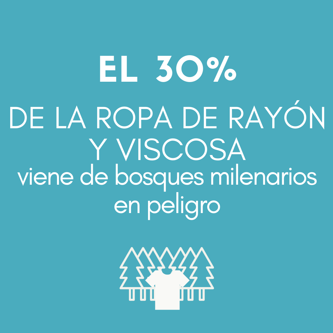 >El 30 % DE LA ROPA DE RAYÓN Y VISCOSA viene de bosques milenarios en peligro.