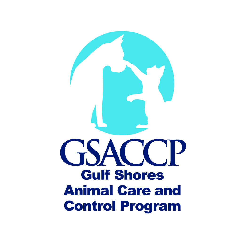 gsaccp logo.jpg
