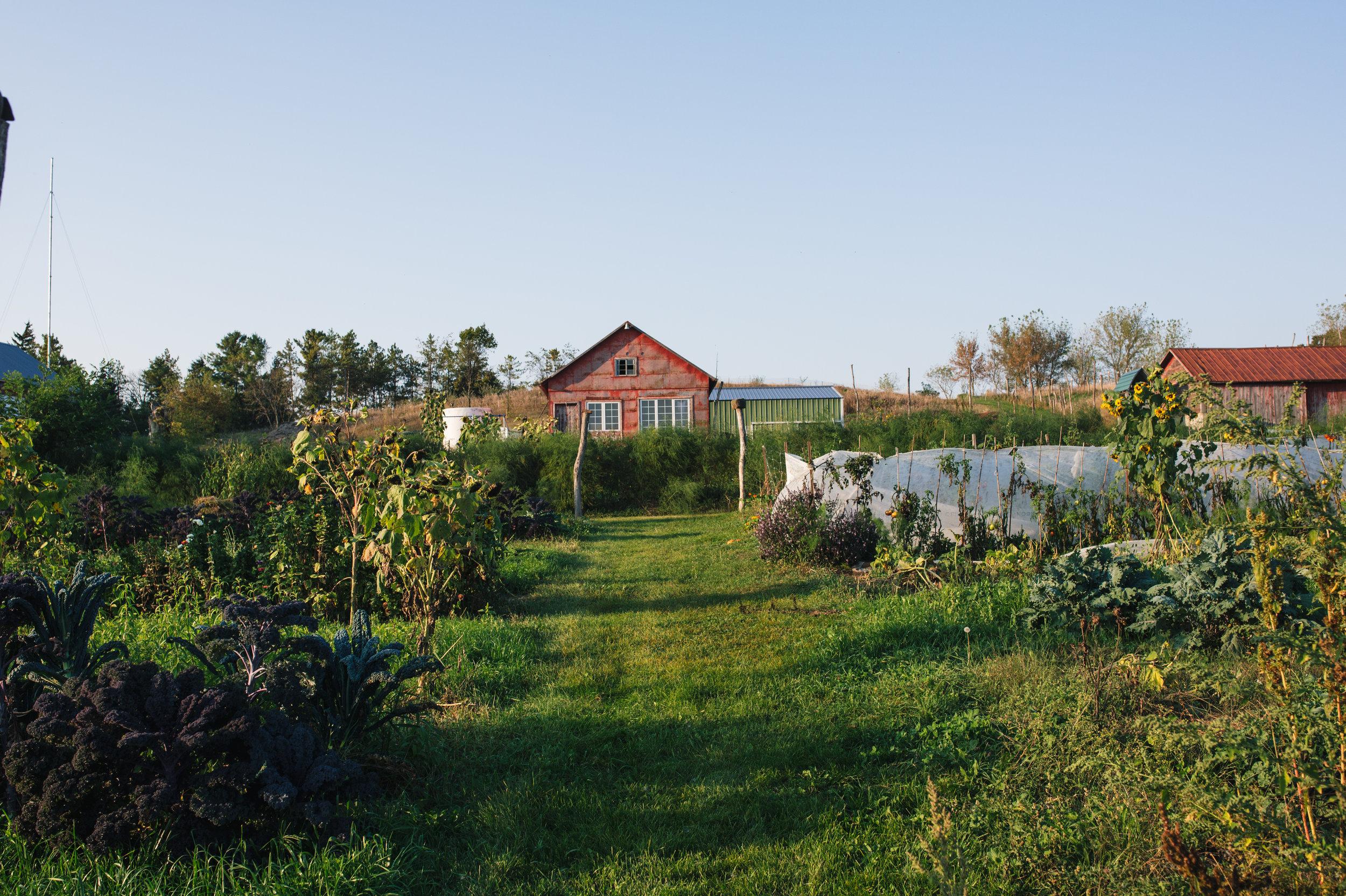 Rustic Barn and Organic Farm Wedding Venue Outside Milwaukee, WI