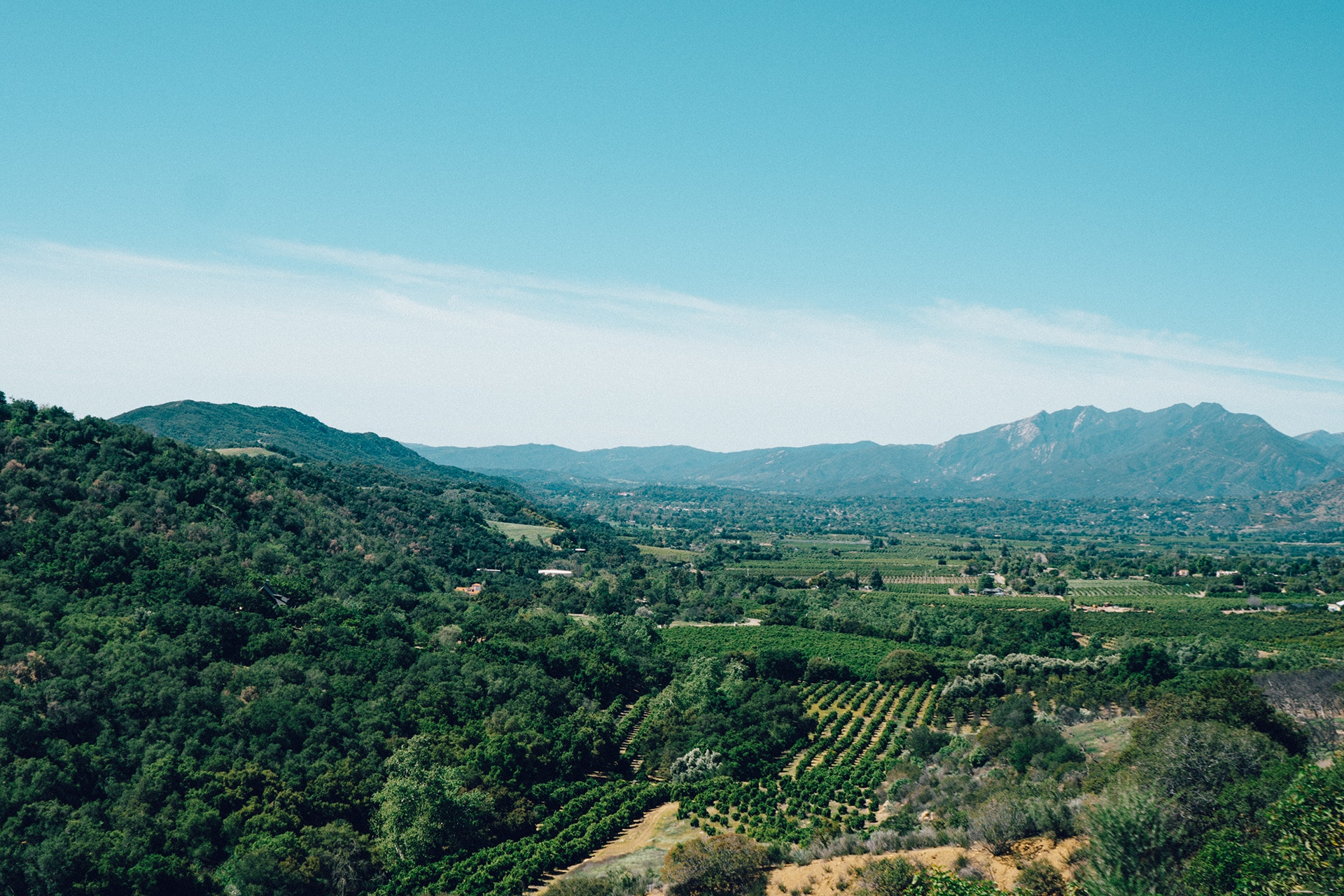 Northern California - A guide to wedding venues in the Bay Area and Wine Country