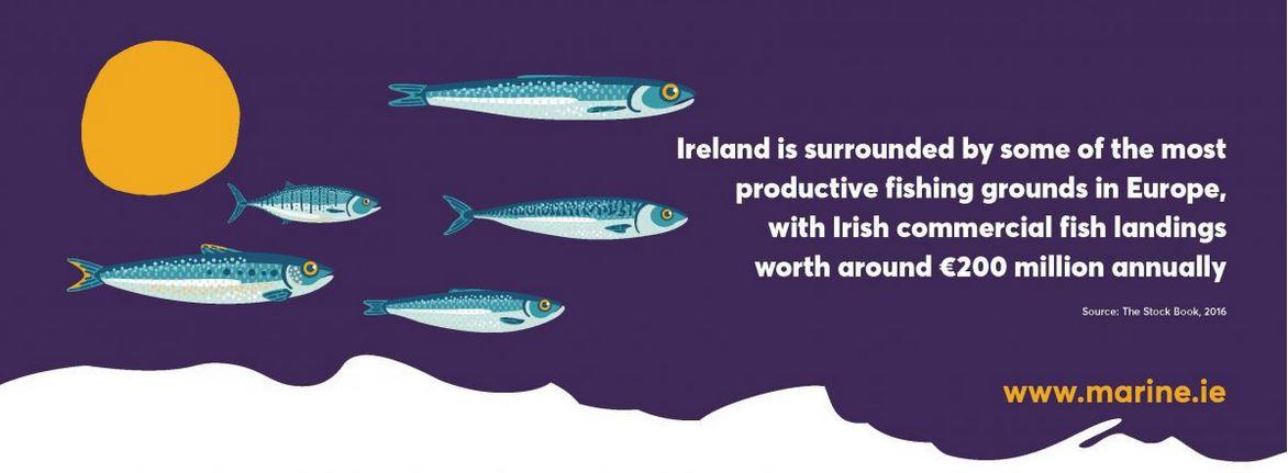 Ireland resources.JPG