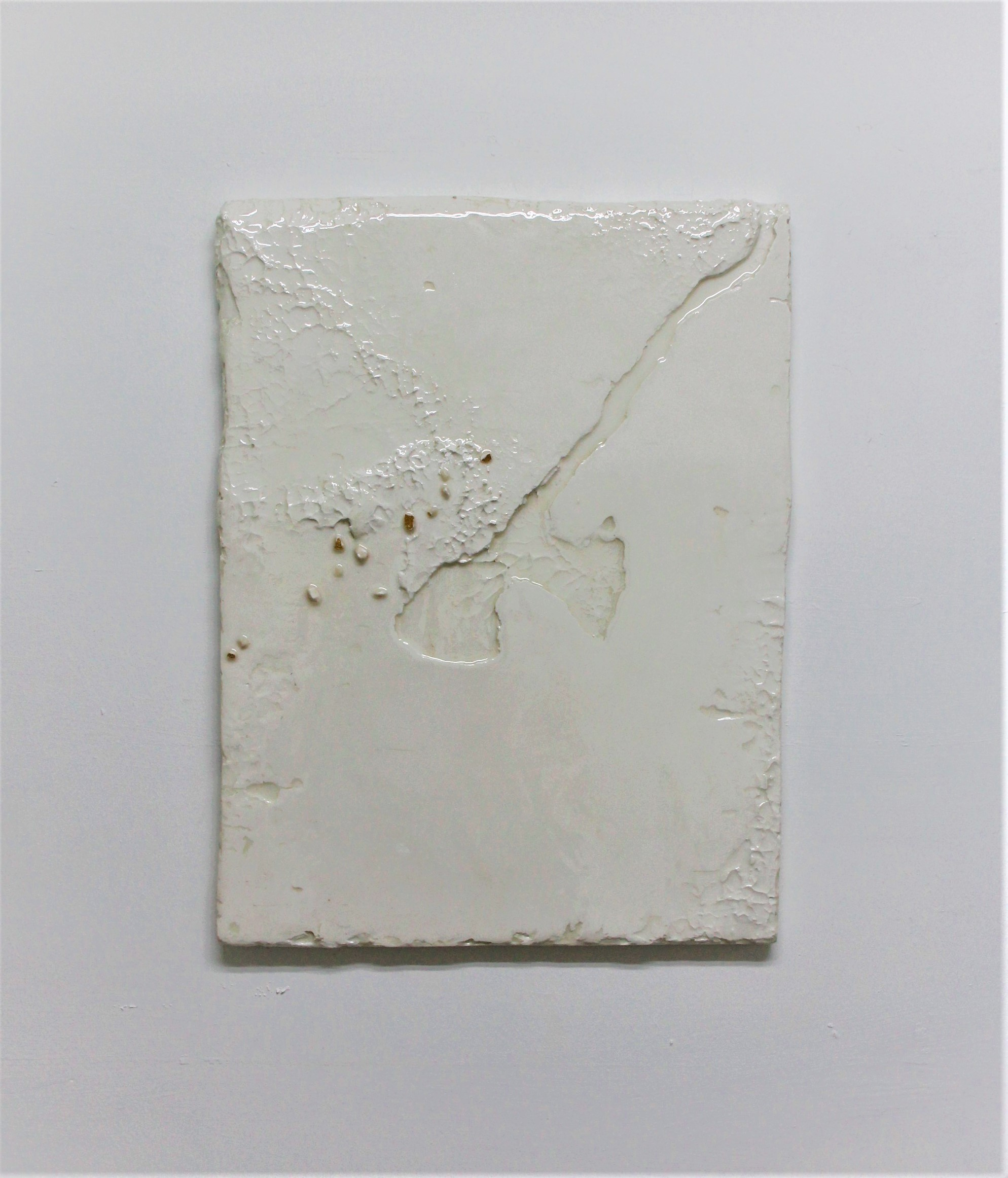 Appendix 4, 2019, Resinated Gypsum Plaster and Gold Leaf on Wood, 60 x 46 cm.jpg