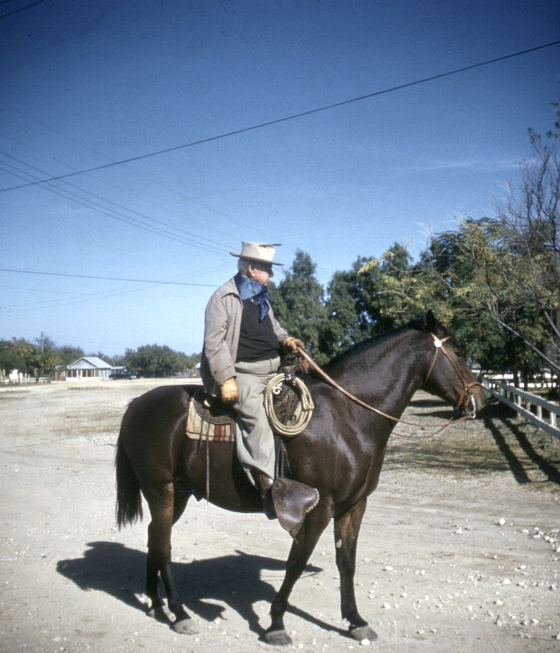 Ewing Halsell on Rooster