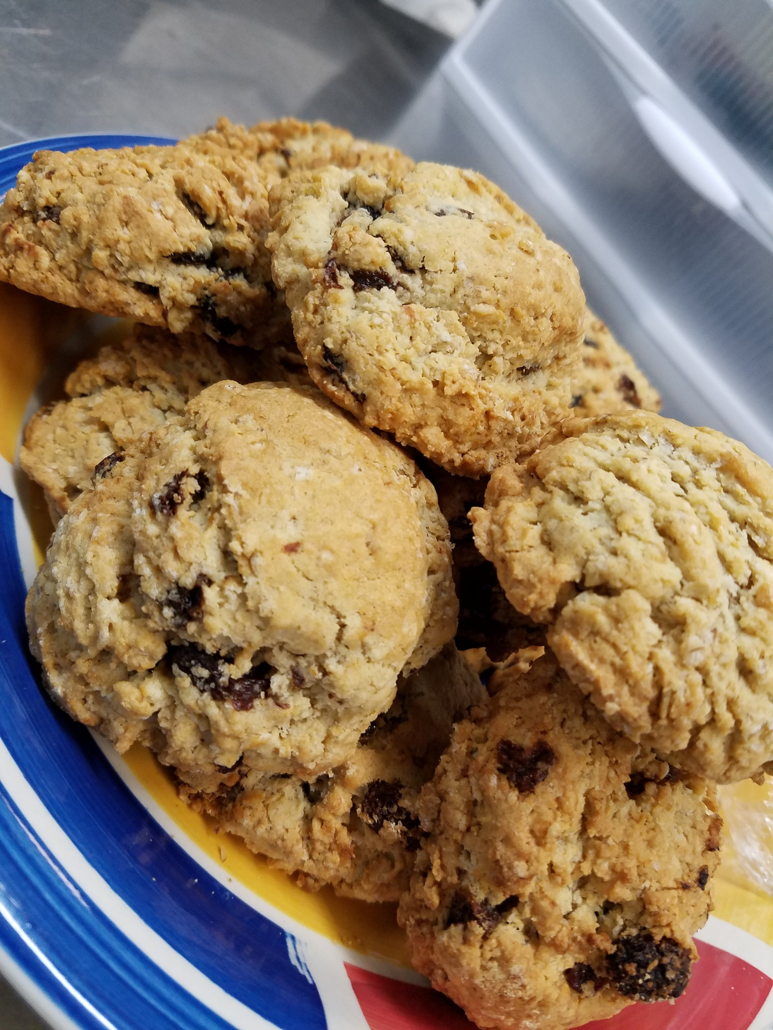 Chocolate Chip Waycross Cookies