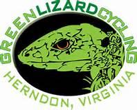 Green Lizard Logo.jpg