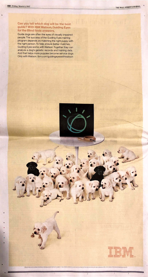 An Atlas litter representing Guiding Eyes For The Blind and IBM Watson in The Wall Street Journal.