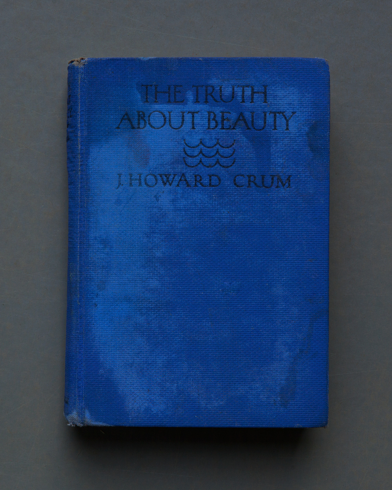The Truth About Beauty, 2017