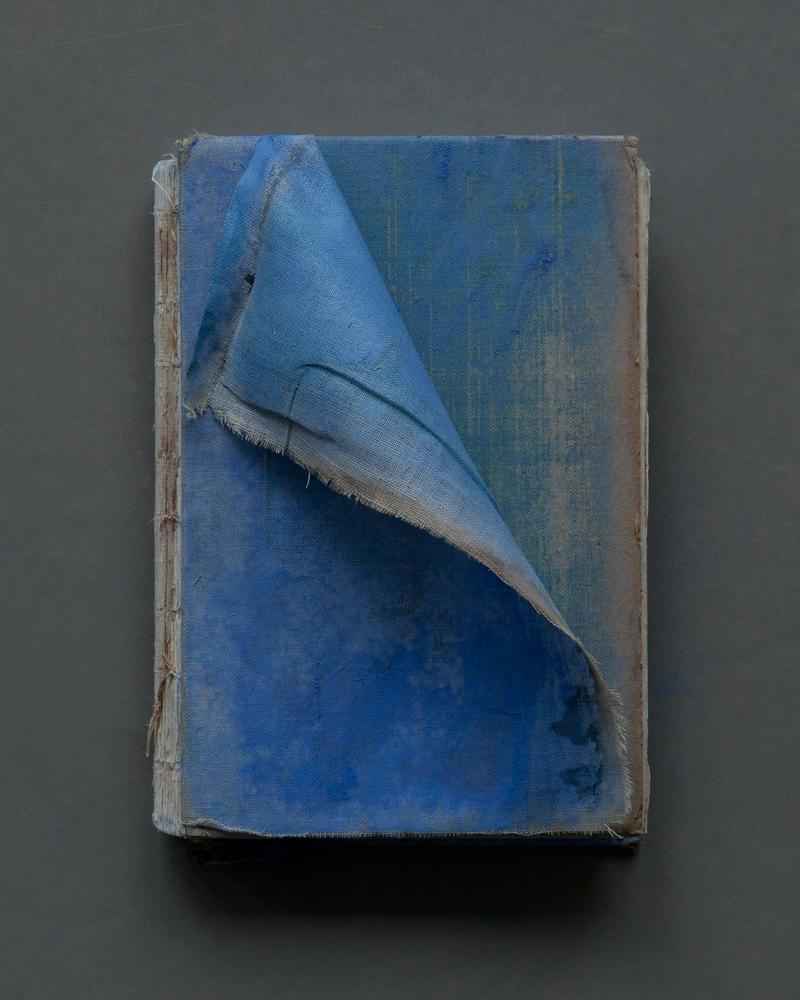 Blue Cloth Cover, 2017