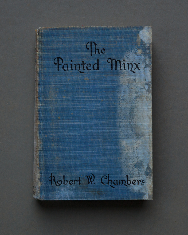 The Painted Minx, 2017