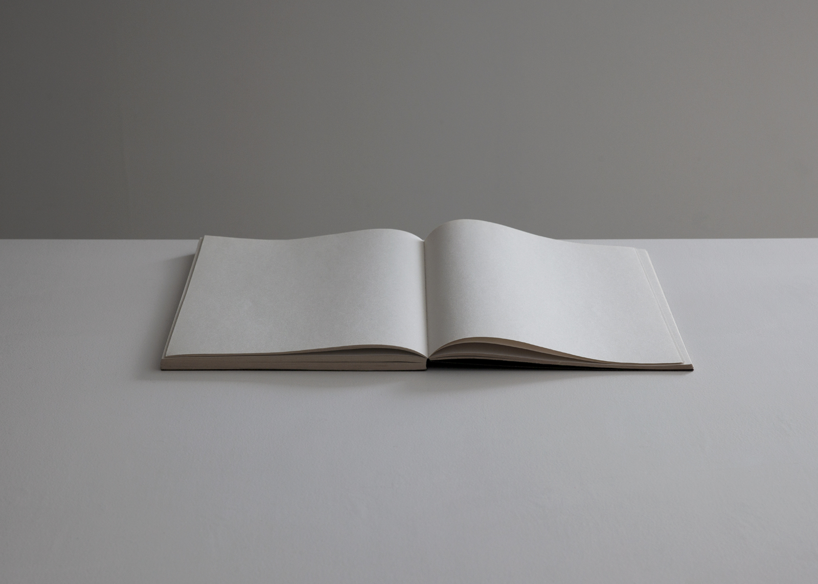 open-notebook-flat.jpg