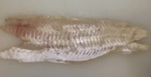 For our fish salad, we debone the whiting first. -