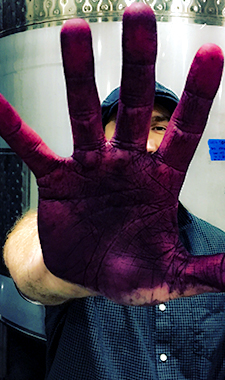 Hand_Photo.jpg
