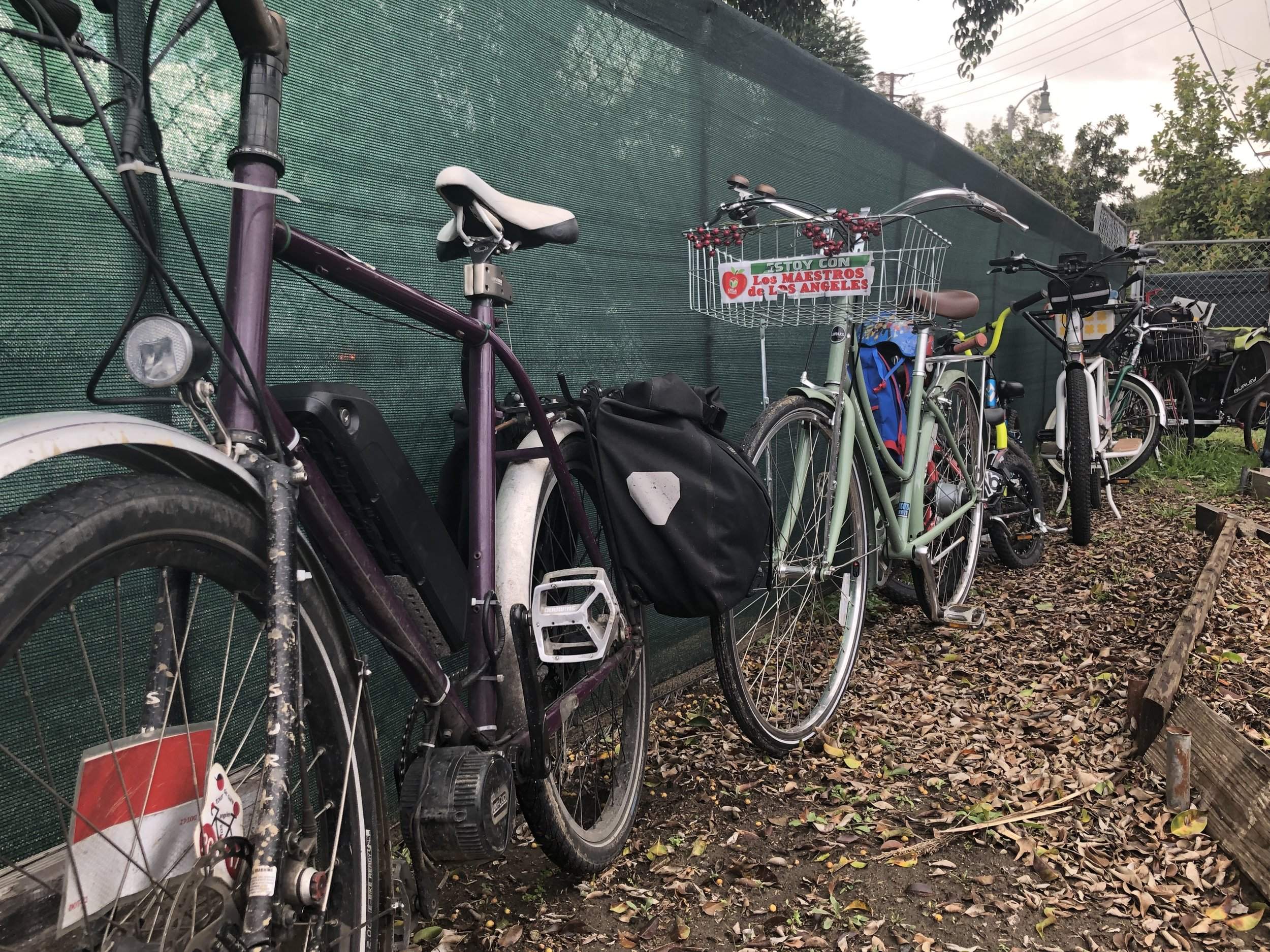 Every bike is beautiful. - Look at the variety from the February ride…