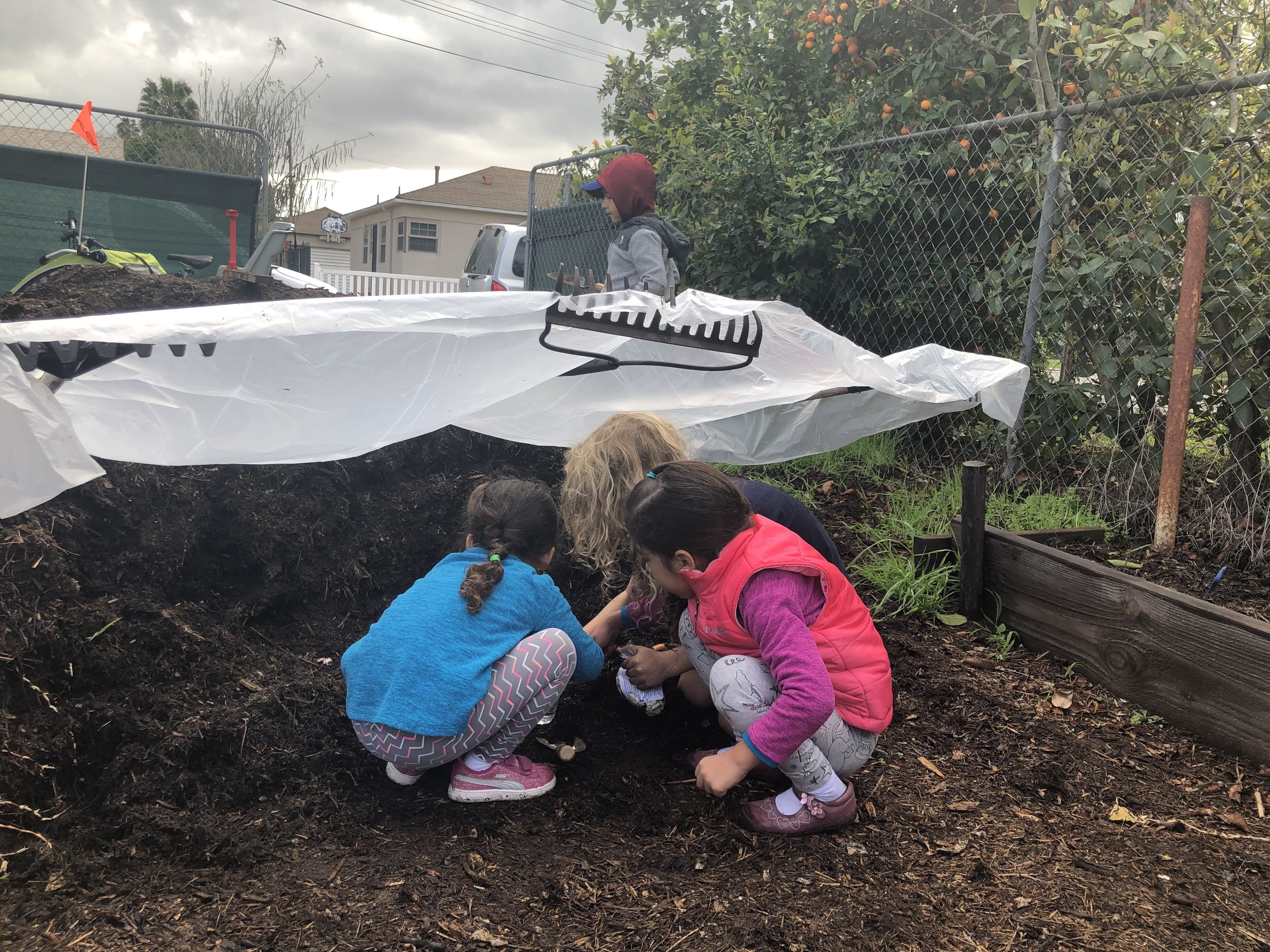 Pop-up rain shelter for kid compost exploration.