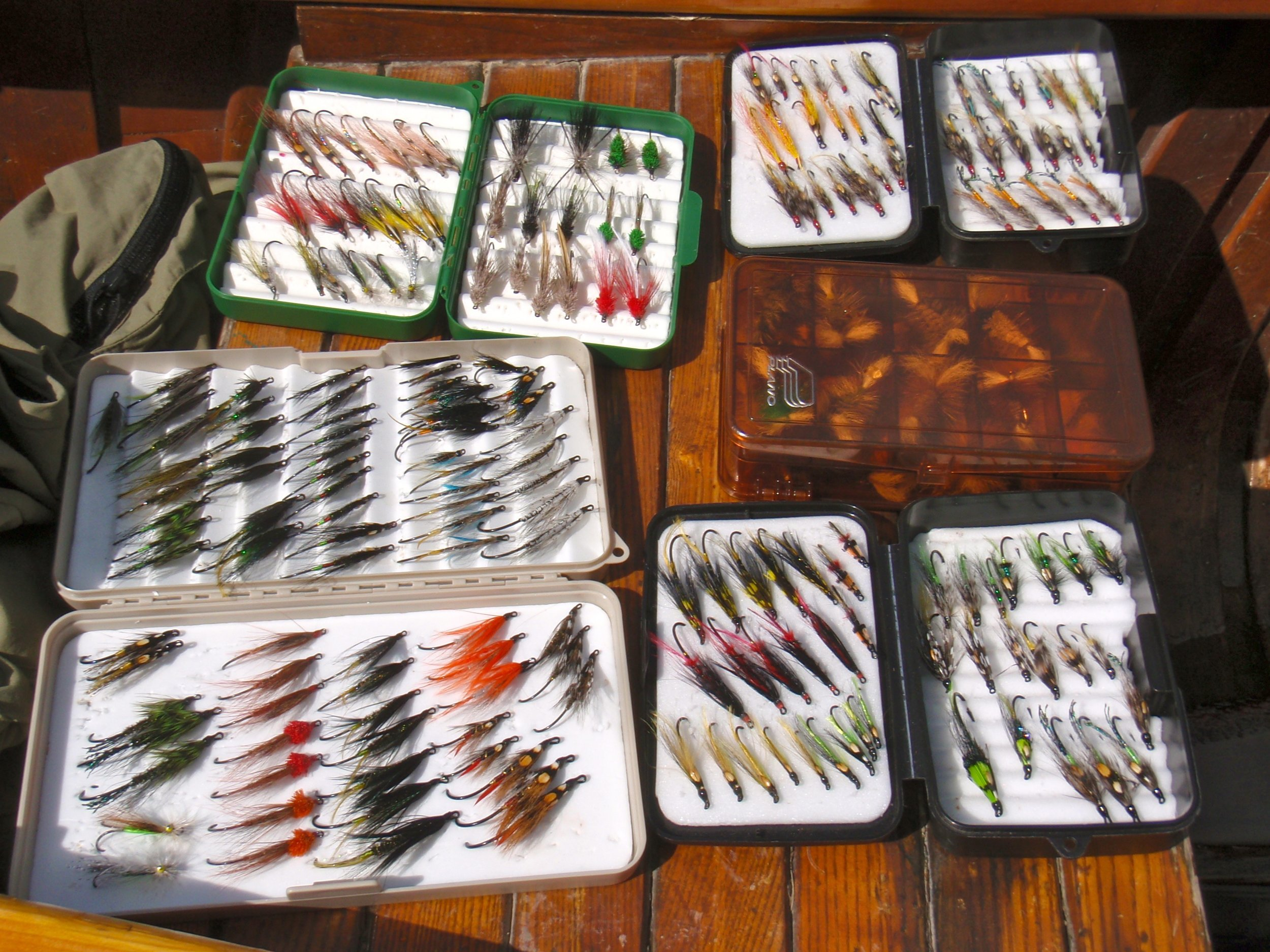 So many choices, a nice June collection of fly's
