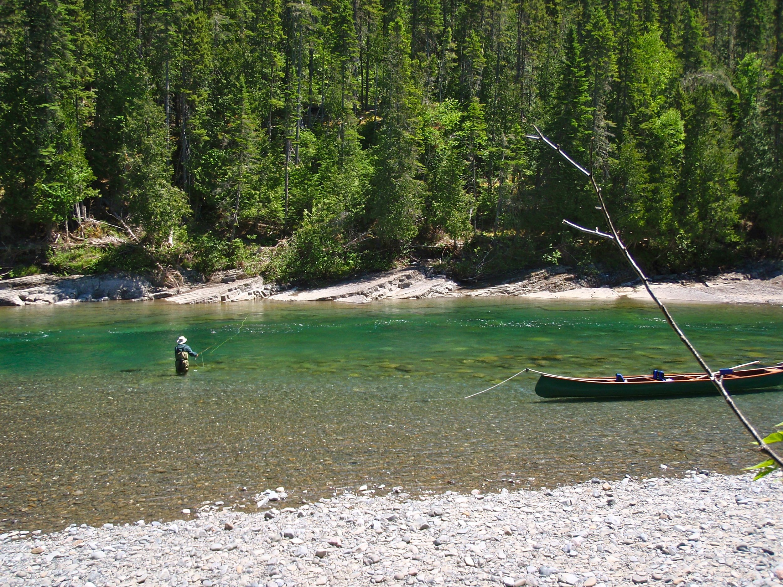 Double Camp still has a good flow despite low water conditions but its still full of salmon!
