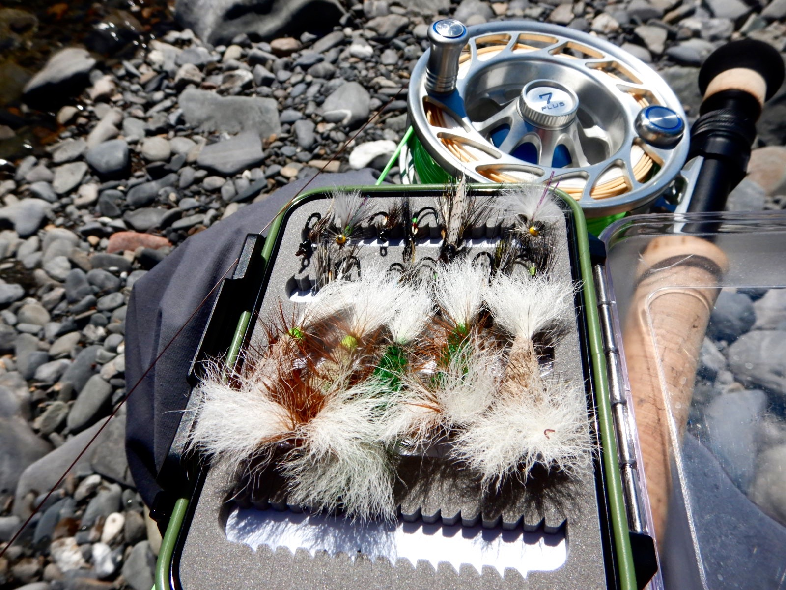Dry fly's were certainly on the menu this week!