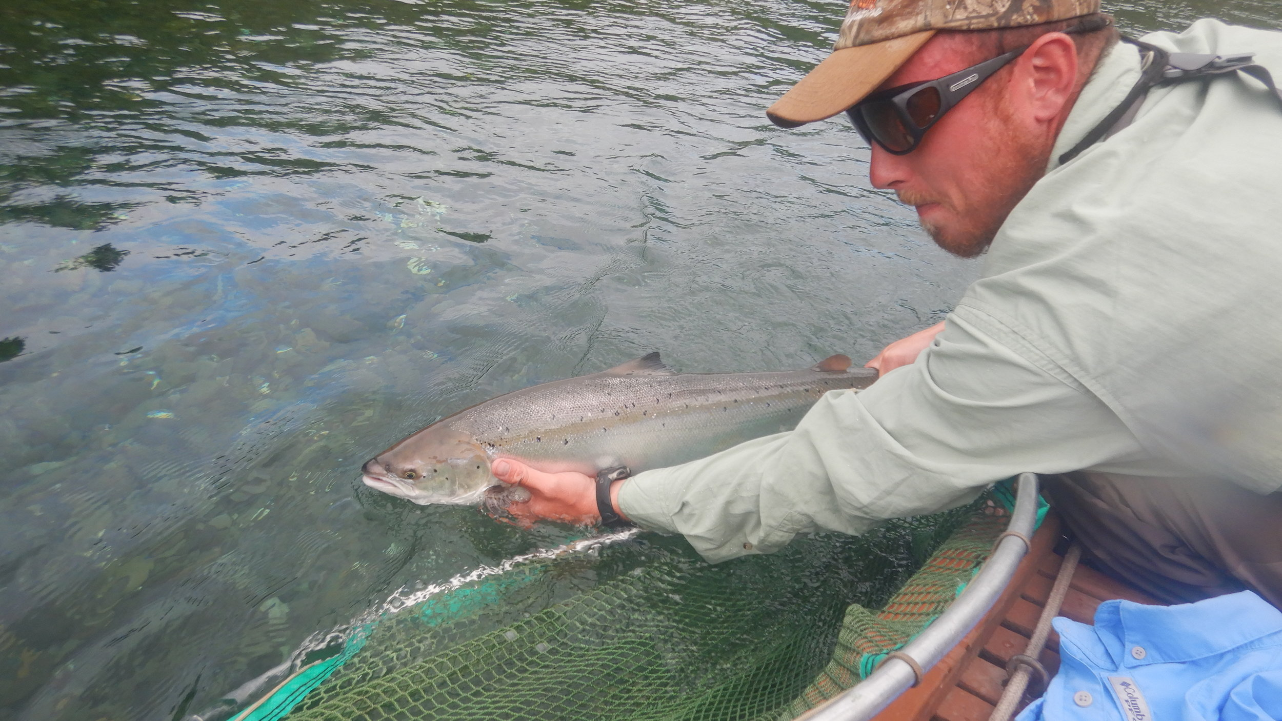 Our wonderful Guide Olivier release a beautiful salmon back to it's home.