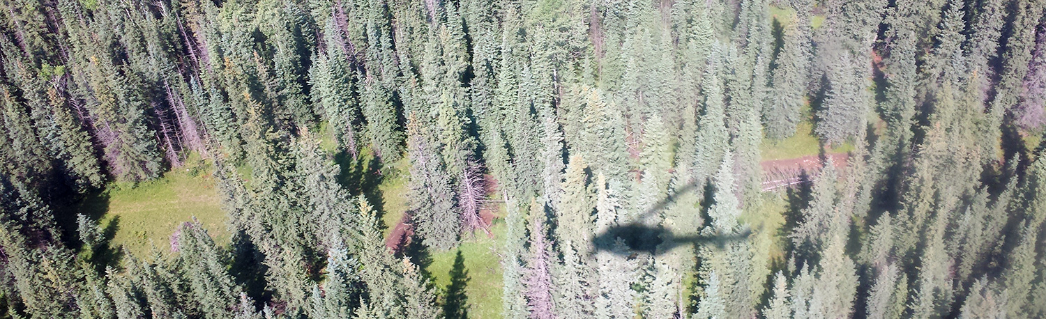 View from the helicopter cabin. Photo by Alex Hakonson.