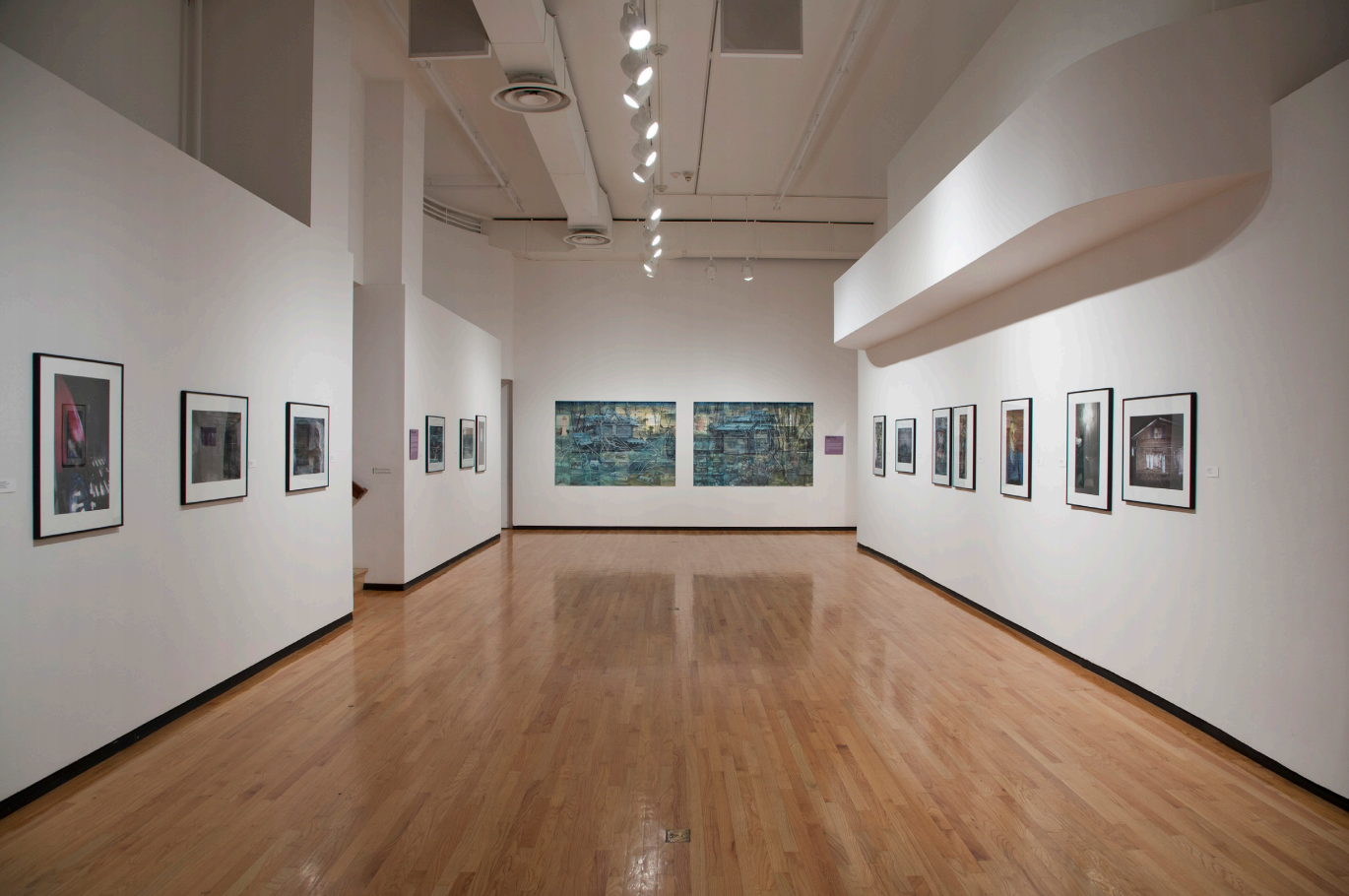 The Limits of Photography - 2012 | The Museum of Contemporary Photography | Curated by Rod Slemmons