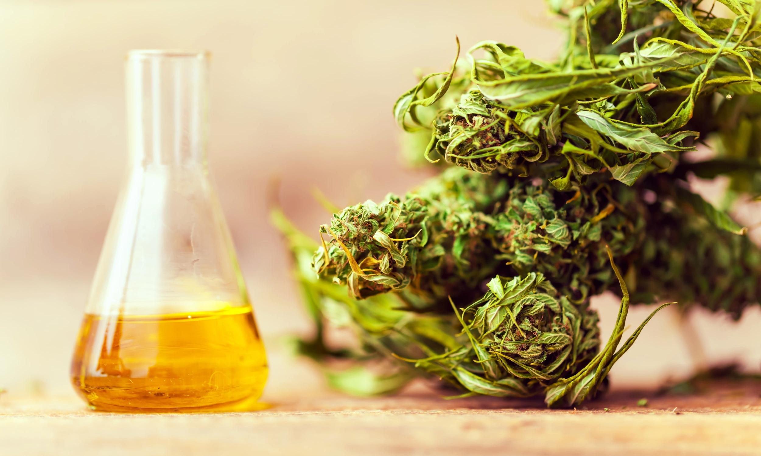 It's all original plant! - No added flavor or aroma enhancers!No propylene glycol!No glycerine!