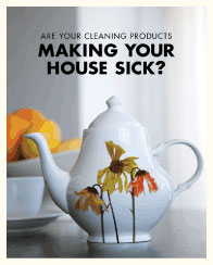 DOWNLOAD the SF Department of the Environment's Safe Home Cleaning Methods Fact Sheet.