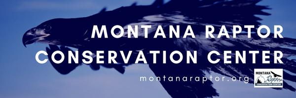 montana raptor conservation center header.png