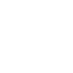 np_windshield-wiper_423_FFFFFF.png