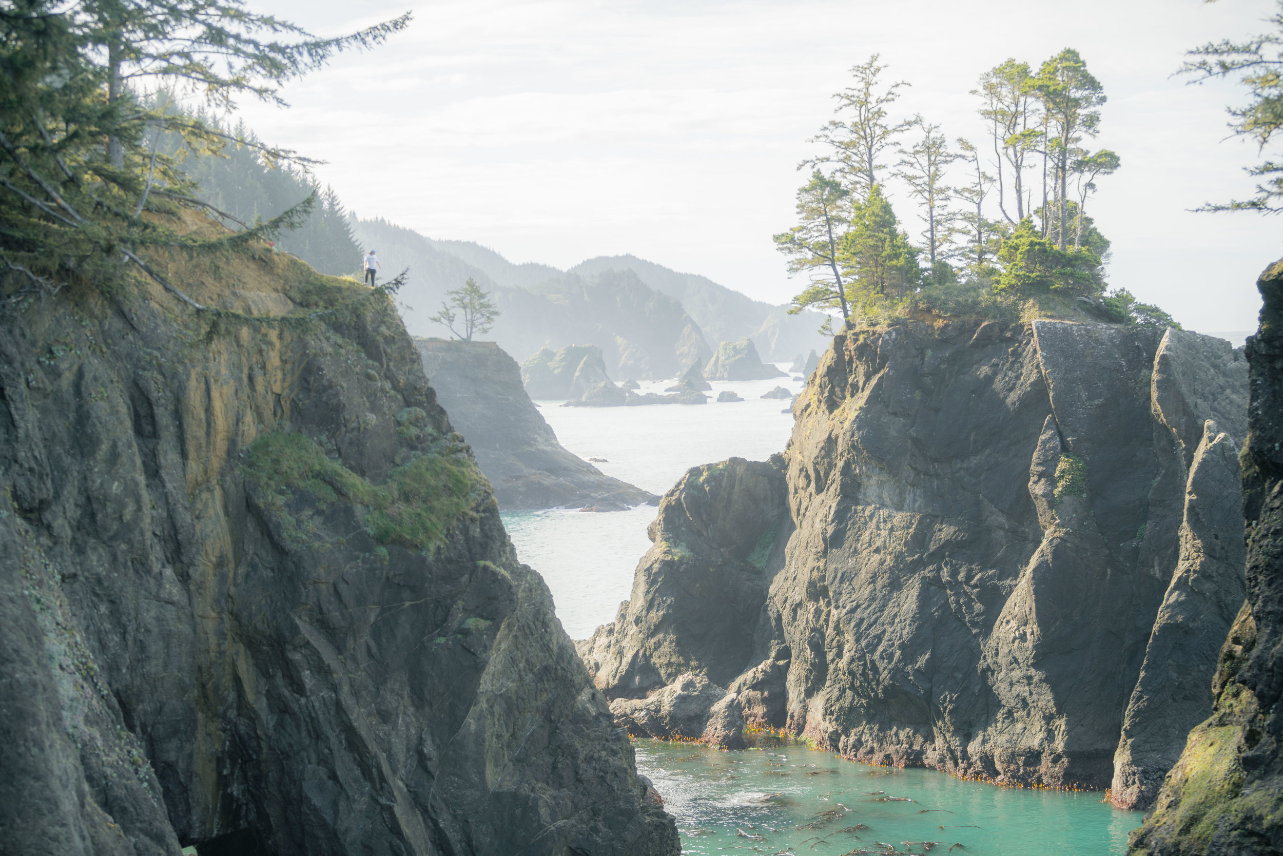Pacific North West -