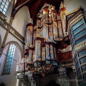 Organ..jpg