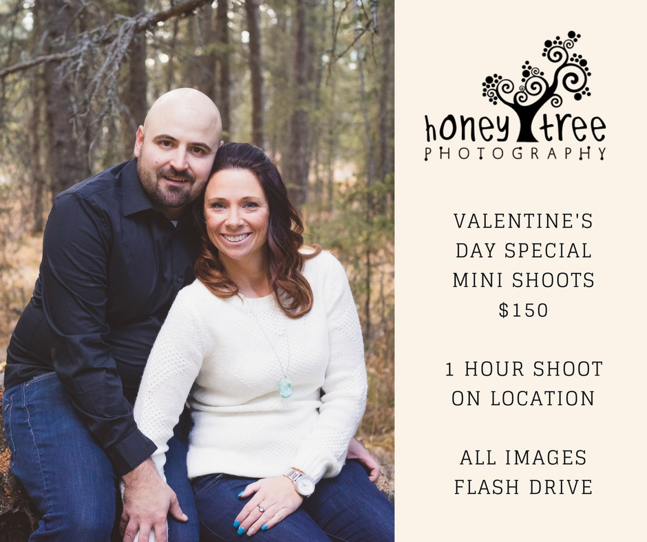 VALENTINE'S DAY SPECIALMINI SHOOTS$1501 HOUR SHOOT ON LOCATIONALL IMAGES FLASH DRIVE.jpg