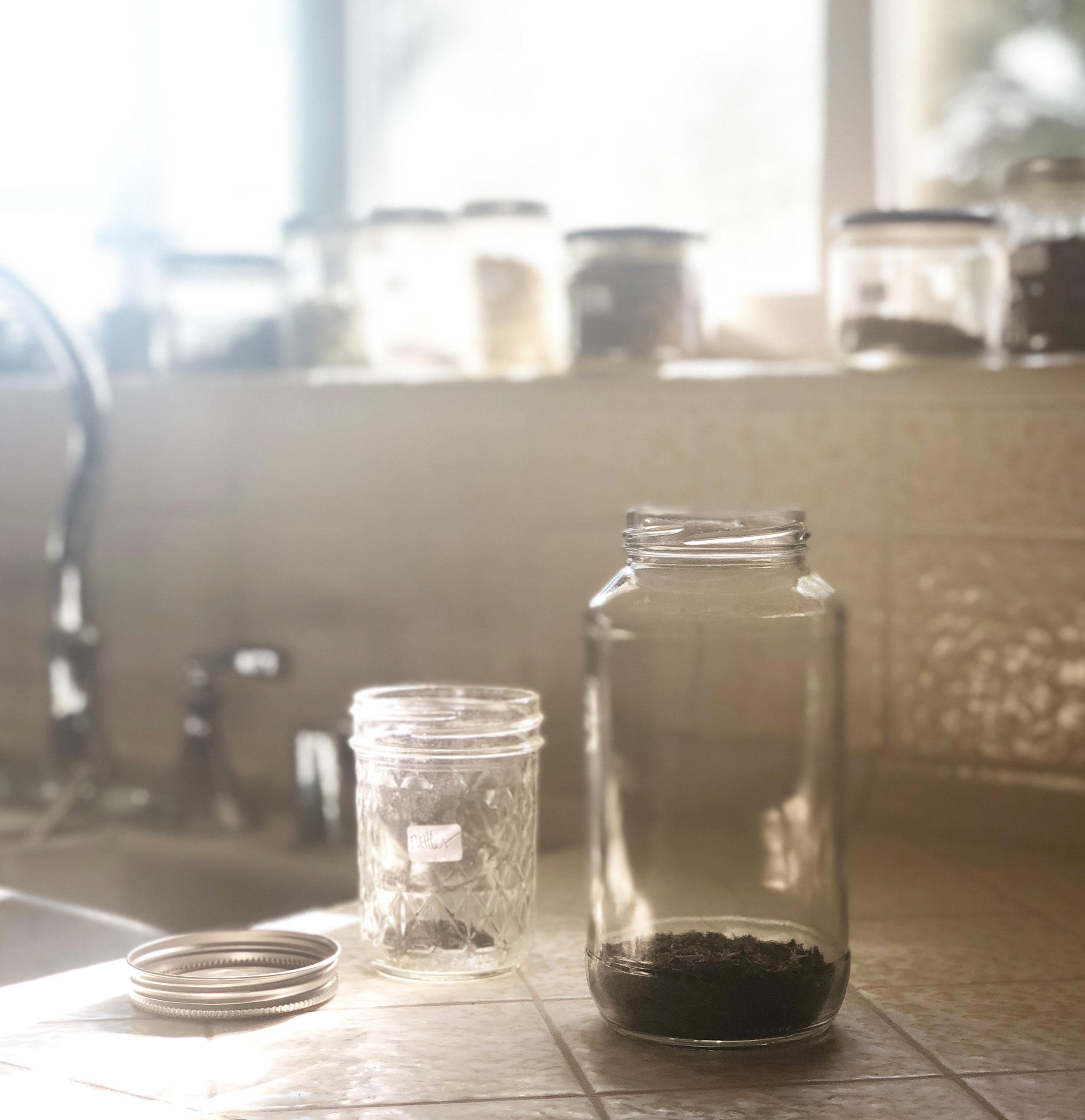 how-to-make-an-herbal-tea-infusion.jpg