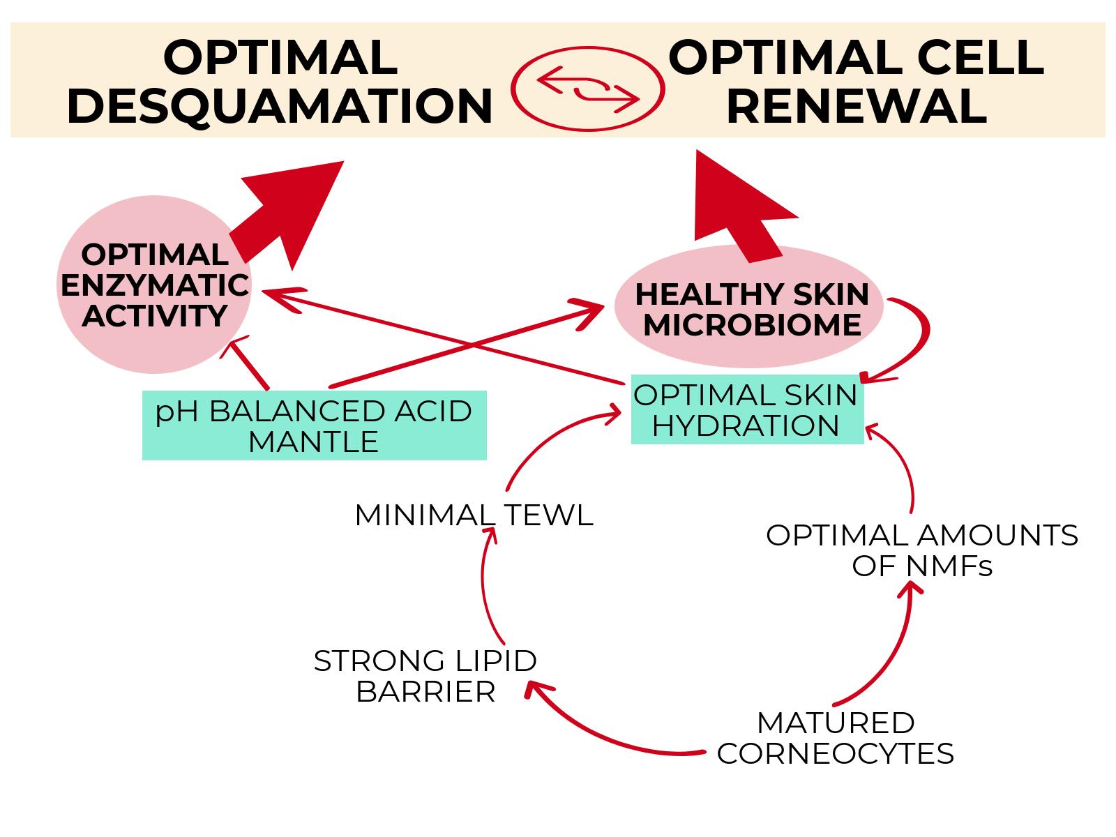 skins-natural-function.png