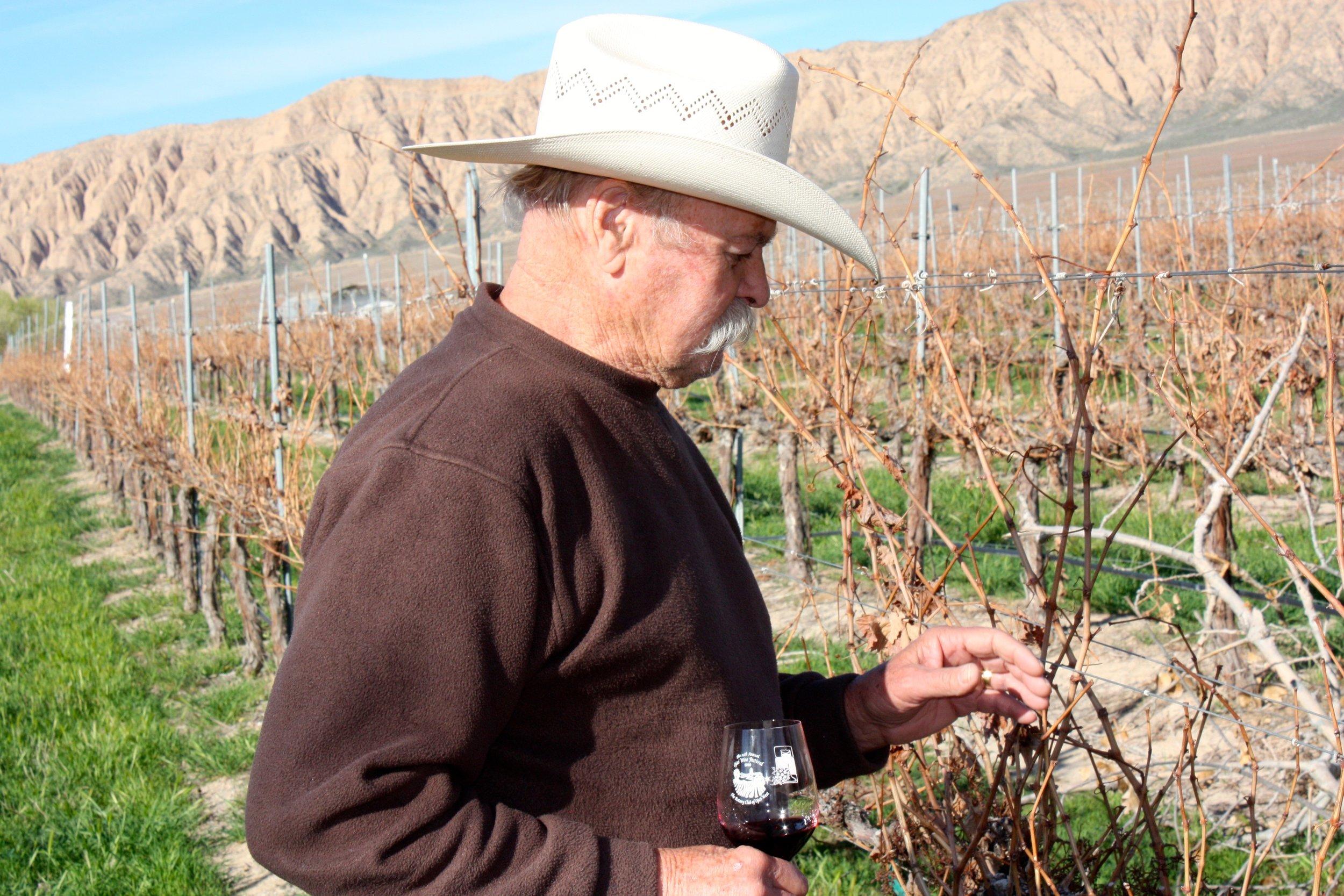 Boppa in the Vines