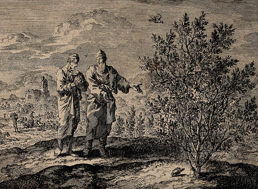Christ tells an apostle how a mustard seed grows into a tree. Source:  Wikimedia Commons