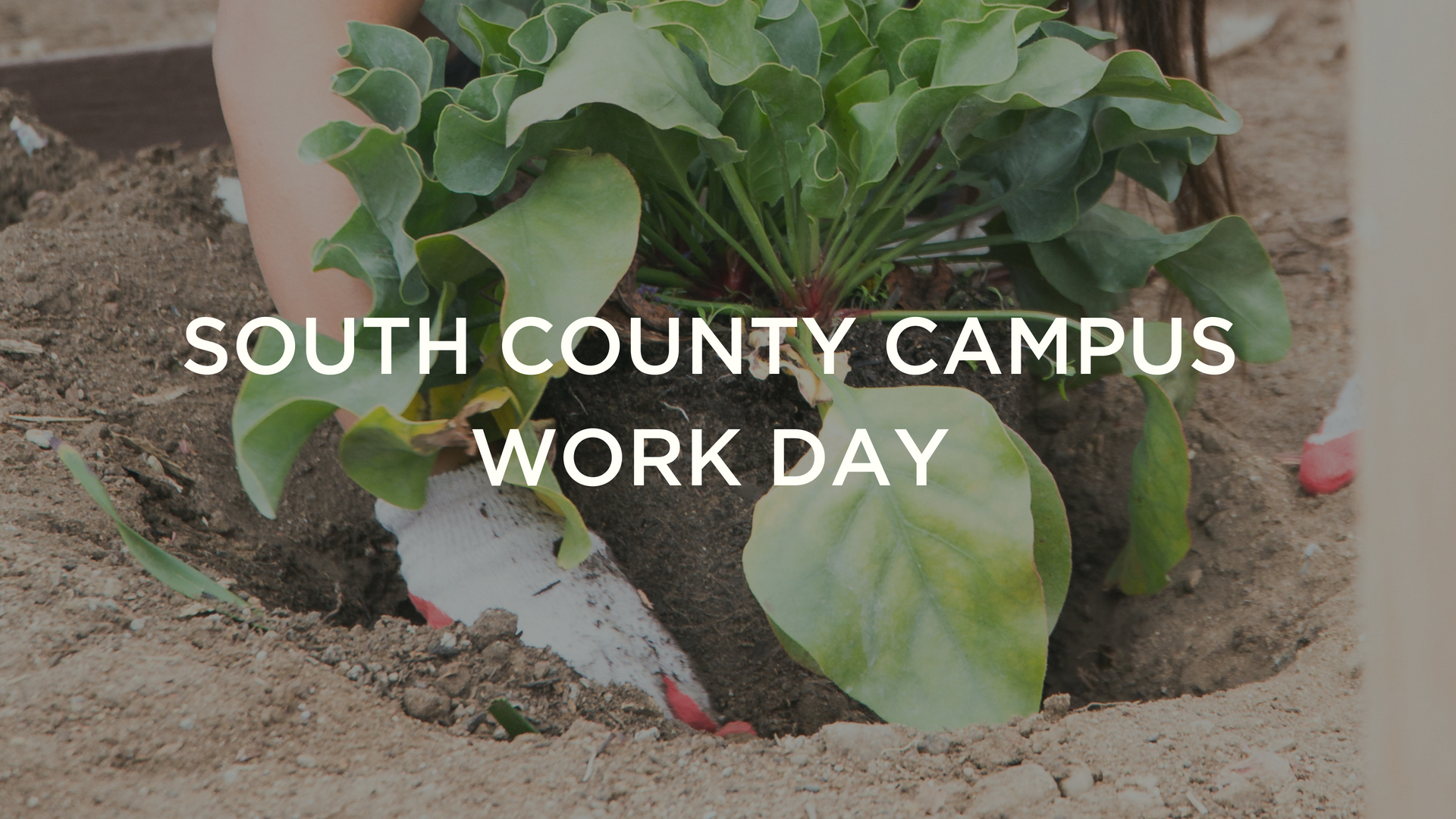 SOUTH COUNTY CAMPUSWORK DAY.jpg
