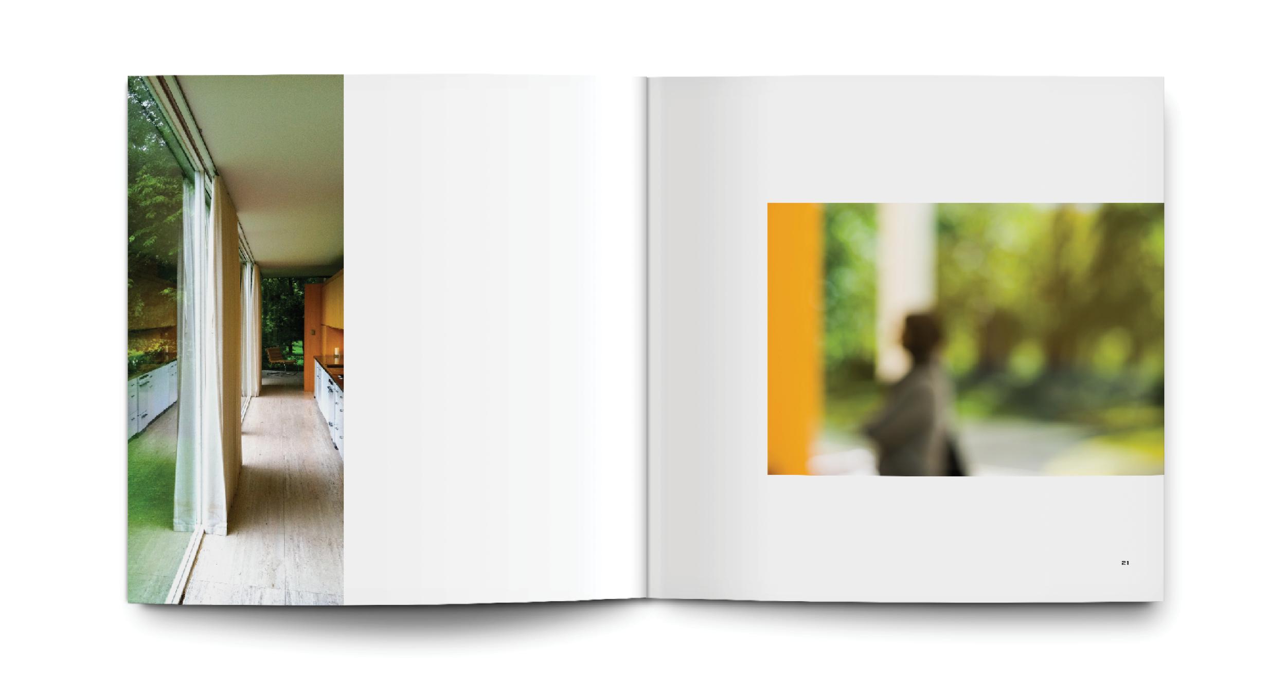 LS Book 3 [Images]10.png