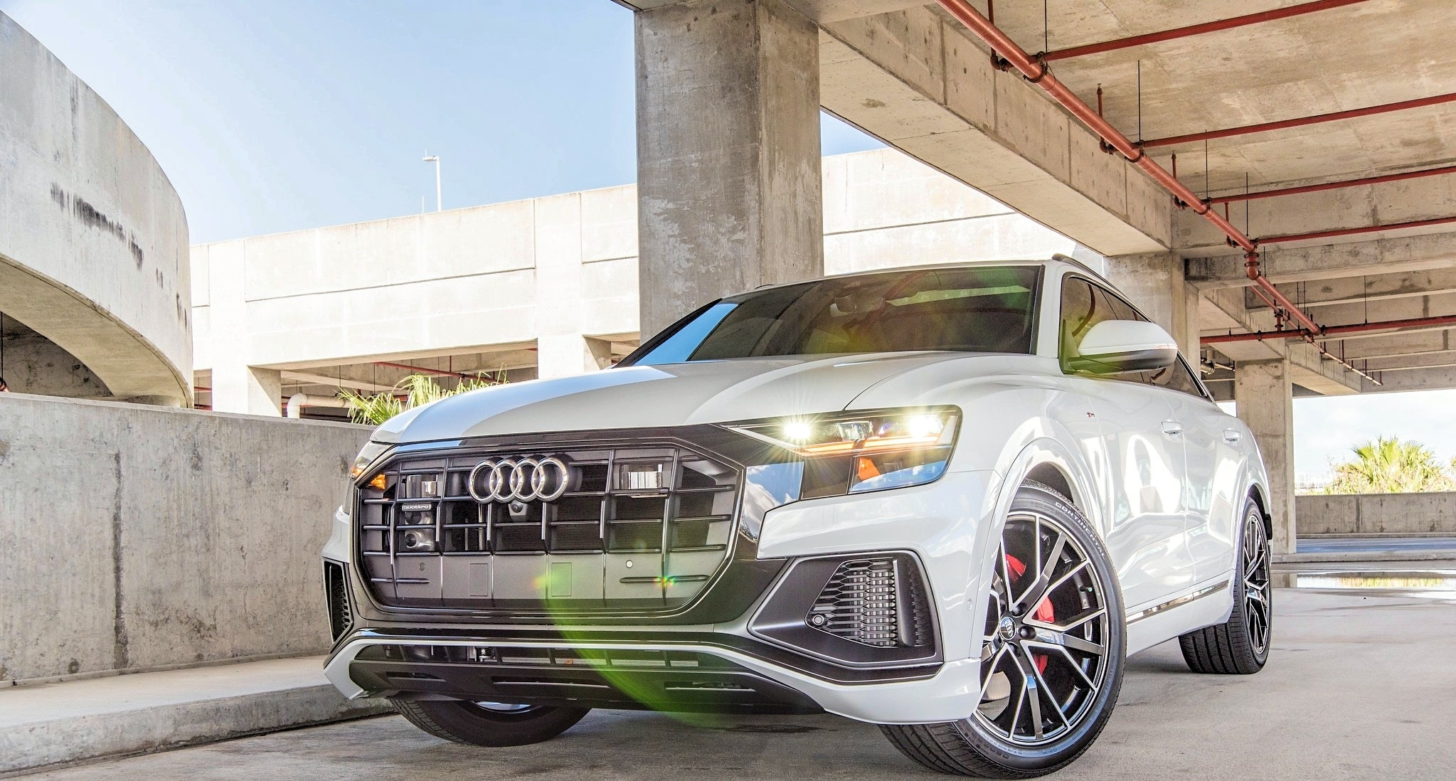 Audi Q8 - Color | White