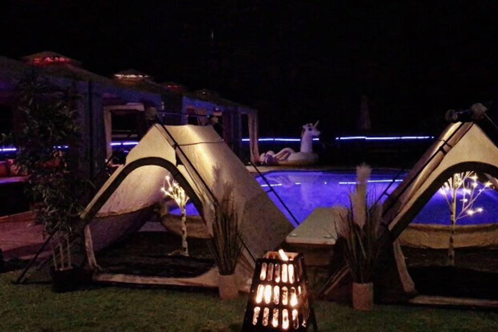 Camping | Backyard